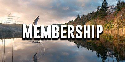 ncbaa-membership